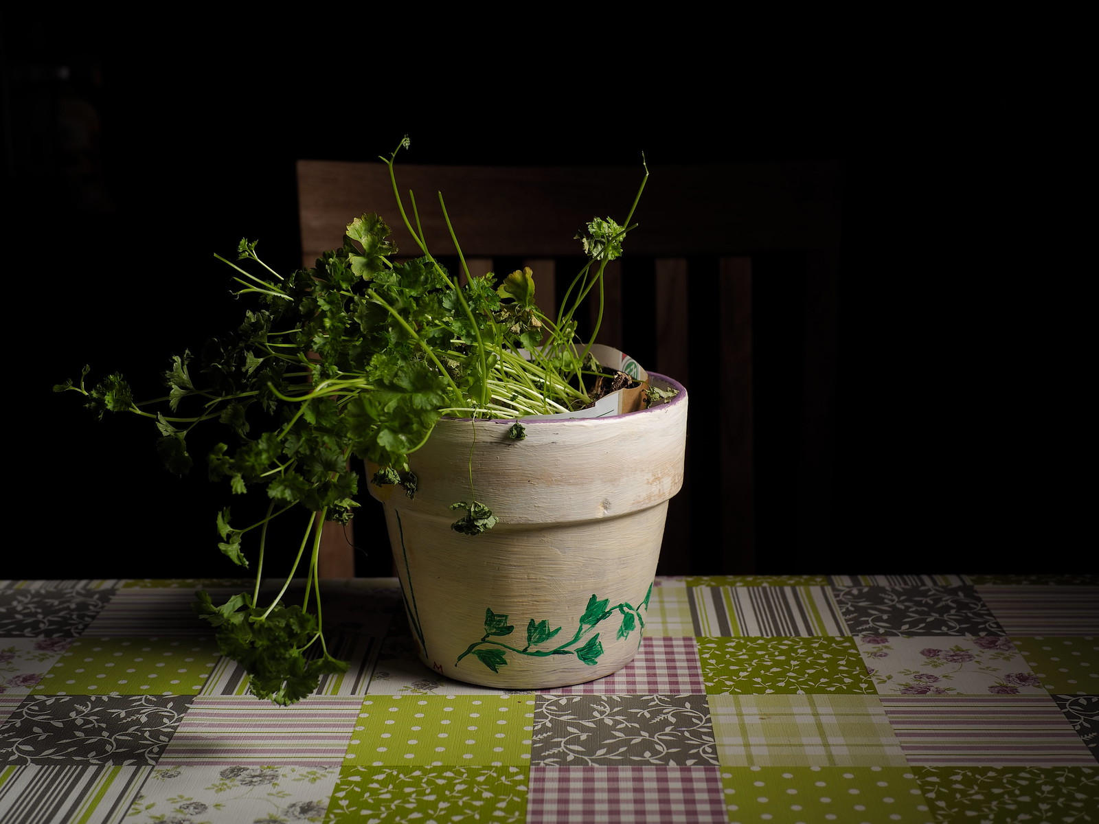 7e2_2169287-parsley