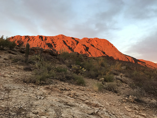Tucson Deset mountians at sunset