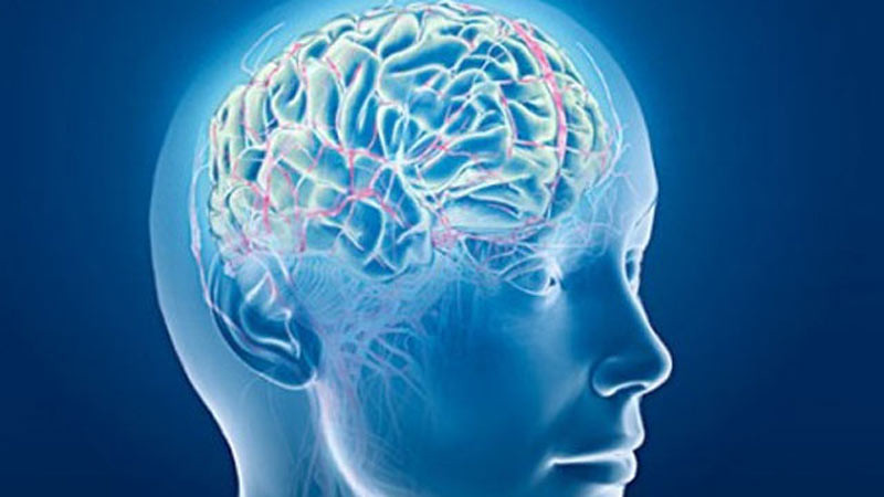 Otak lebih muda dengan belajar sesuatu yang baru.