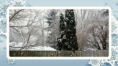 Day 48 of 365--Big Snowflakes Surprised the Day--Cellphone Project 2018