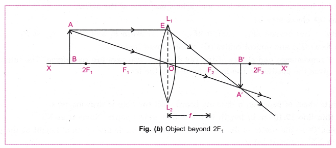 cbse-class-10-science-practical-skills-image-formation-by-a-convex-lens-8