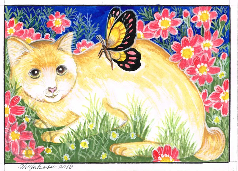 Japanese Bobtail Cat with butterfly & cosmos