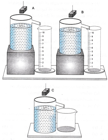 NCERT Class 9 Science Lab Manual - Archimedes' Principle-7