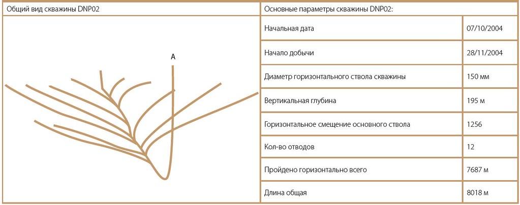 График работы скважины DNP02