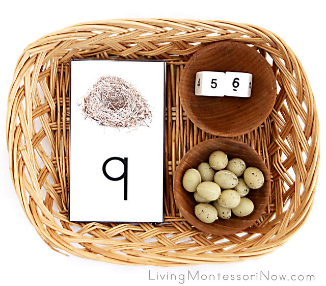 Nest and Egg Addition and Subtraction Activity