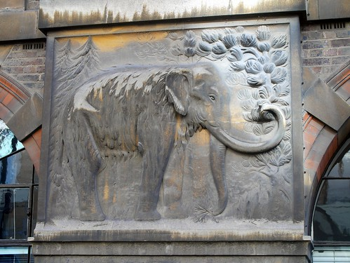 Cambridge - Stone Mammoth