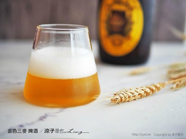 金色三麥 啤酒 9