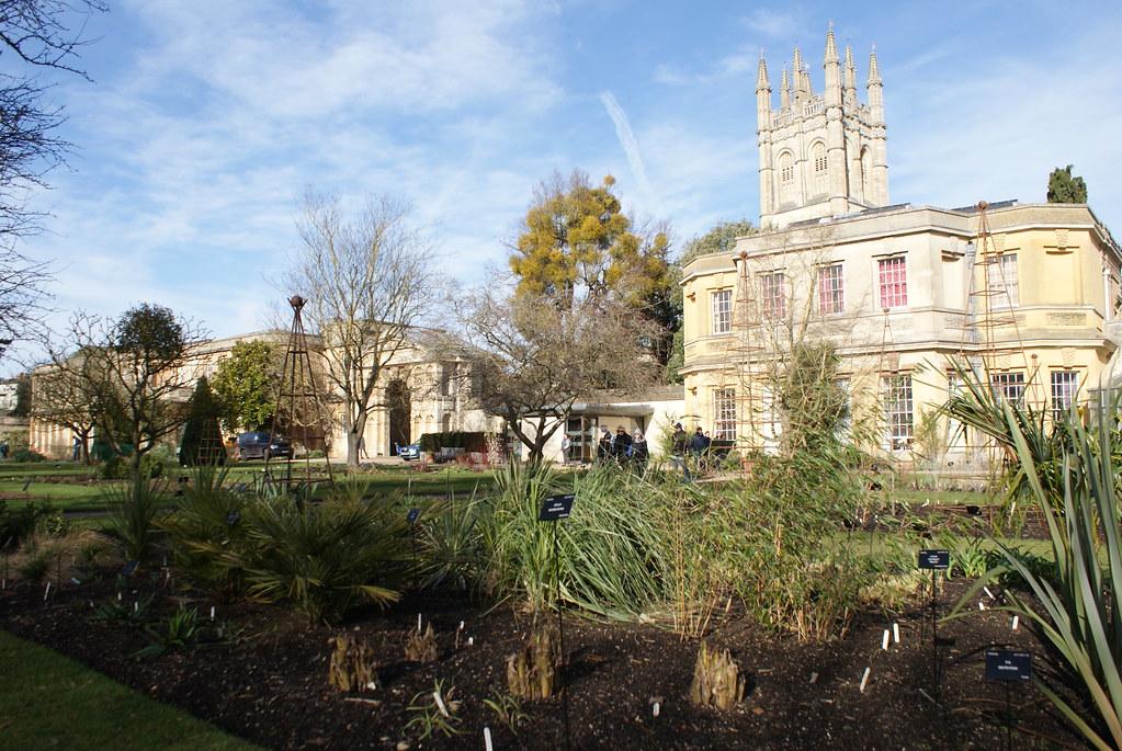 Jardin botanique à Oxford avec la tour du Magdalen College en arrière plan.
