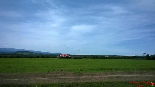 house home landscape grass lawn hills sky tree nyeri kenya