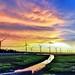 高美濕地夕彩  Gaomei Wetland sunset by Jcsee