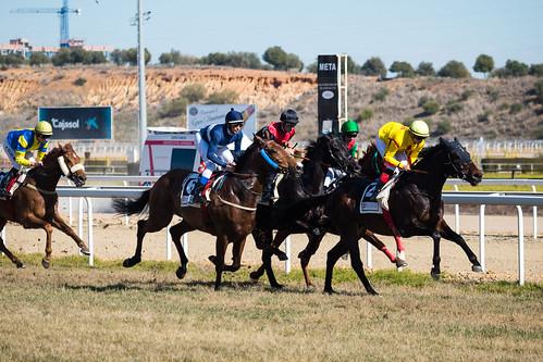 Carreras de caballos en el hipódromo de Dos Hermanas temporada de invierno