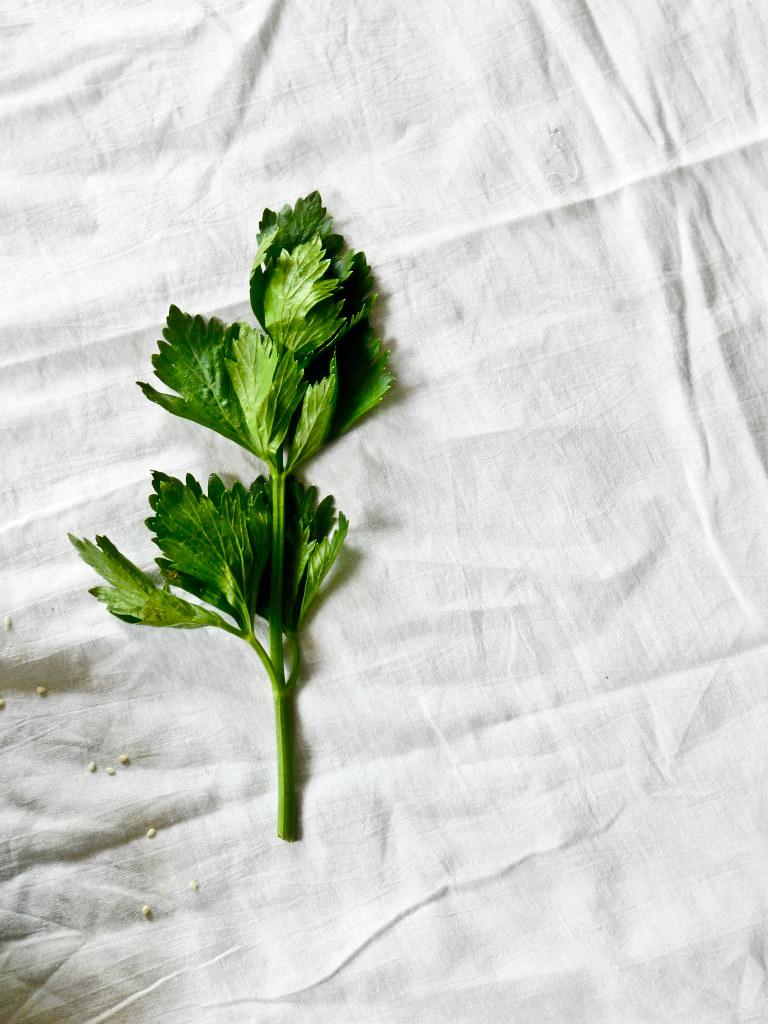 roasted veggies28