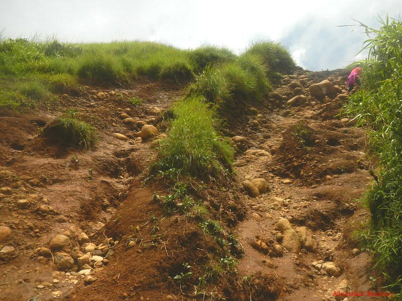 Climbing Pico De Loro