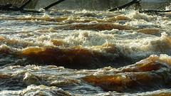Rapid Vantaankoski in the River Vantaa (Vantaa, 20171202)