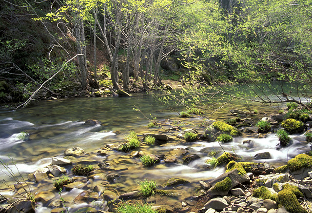 Eel River, California