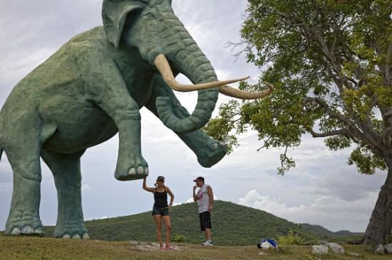 parque-baconao-lugar-historia-naturaleza