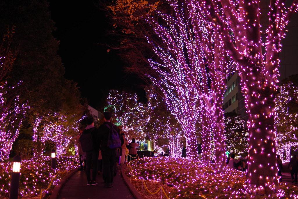 新宿サザンテラスのイルミネーション  Illumination in Shinjuku