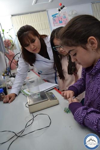 4º Básico experimenta Ley de Newton en Laboratorio