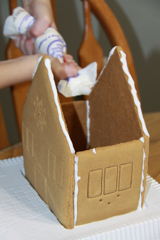 Gingerbread House (1)