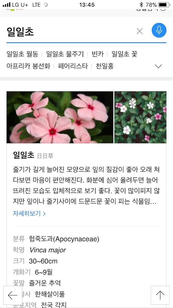 koreanapps-flowersearch13