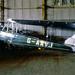 American Moth Corporation DH.60GM Gipsy Moth G-AAVJ North Weald 13-5-89