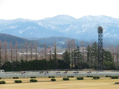 金沢競馬場の3コーナーを駆け抜ける馬たち