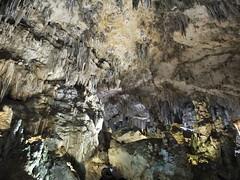 Cueva de Nerja - Techo de una sala 2