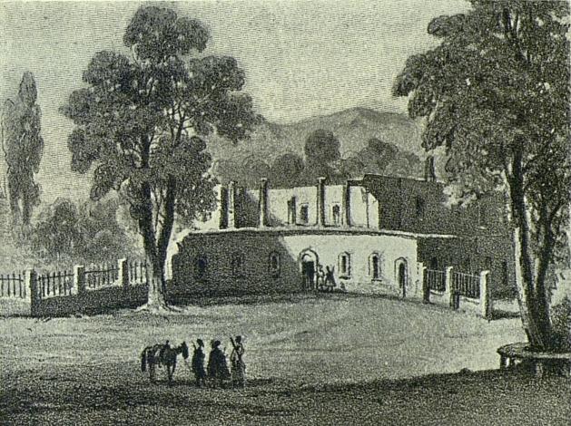 Цинандали 1850-t