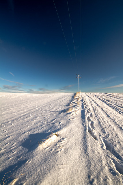 stretching into the distance, thin cables catching the sun, trapped between blue sky and snow. Near Potterton, Aberdeenshire, Scotland.
