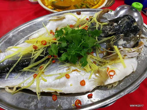 Steamed Patin