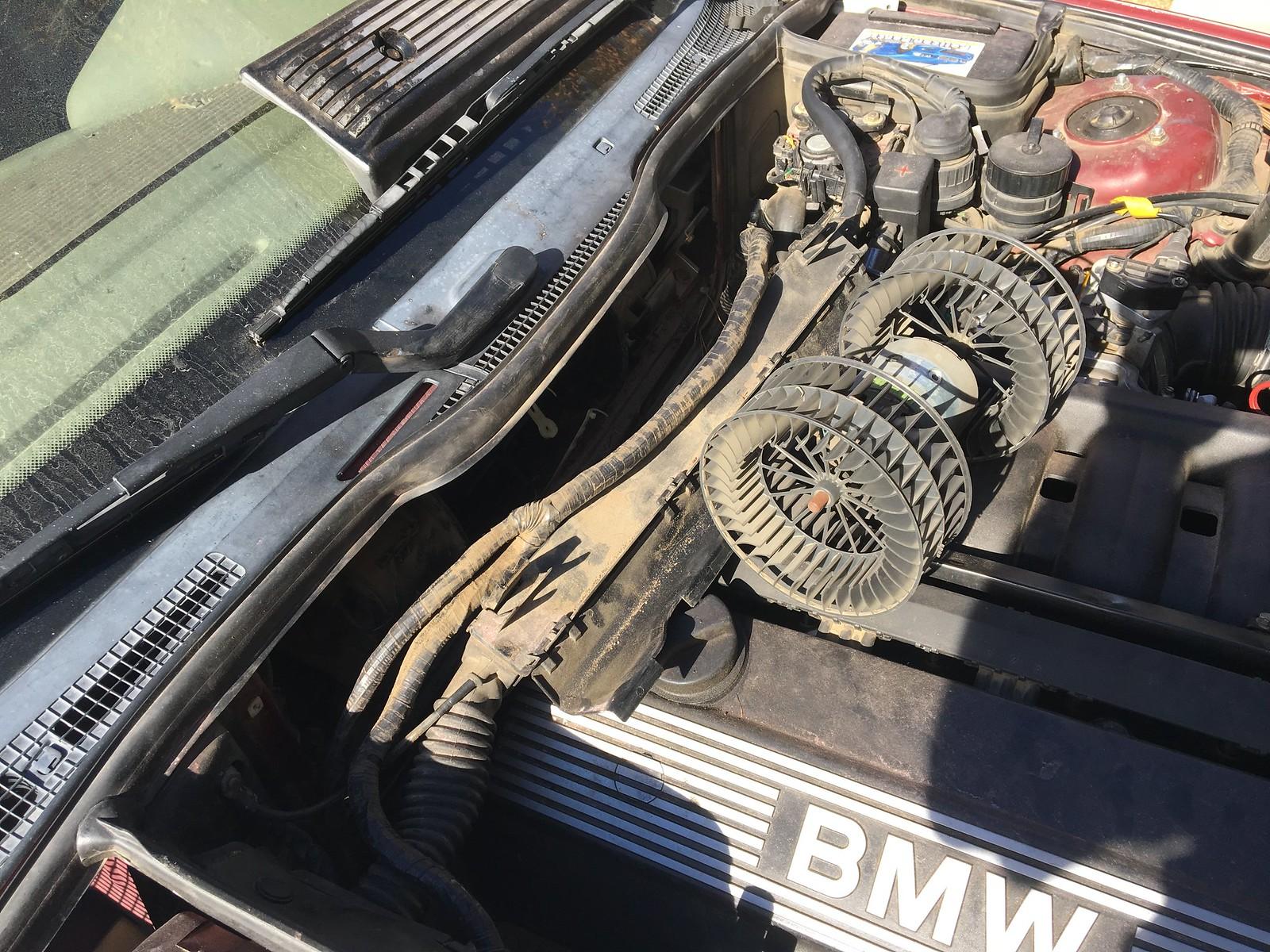 30 Amp Blower Fuse Blown