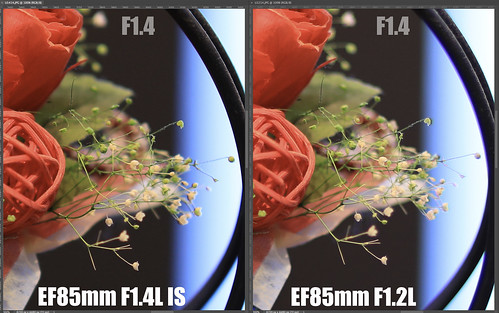 EF85mm F1.4L IS vs EF85mm F1.2L_10