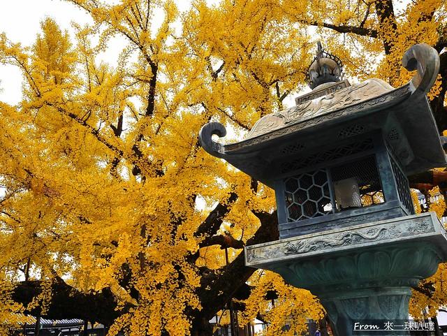 西本願寺38