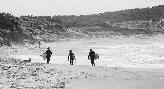 Endless Surf