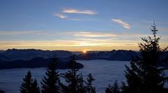Berge der Alpen