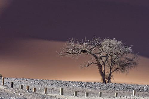 hardapregion namibia na coth5