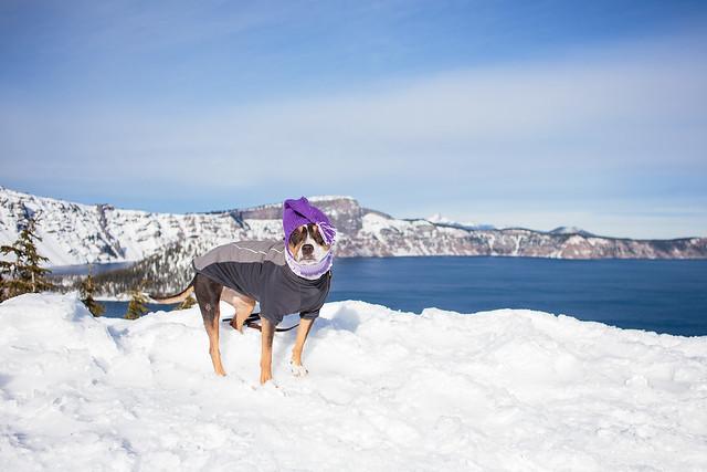 Crater Lake December-7347