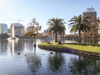 palm trees and Lake Eola | by Joe in DC