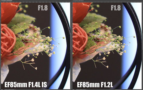 EF85mm F1.4L IS vs EF85mm F1.2L_13