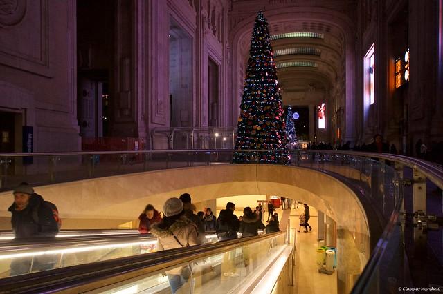 IMGP7681 Galleria delle Carrozze