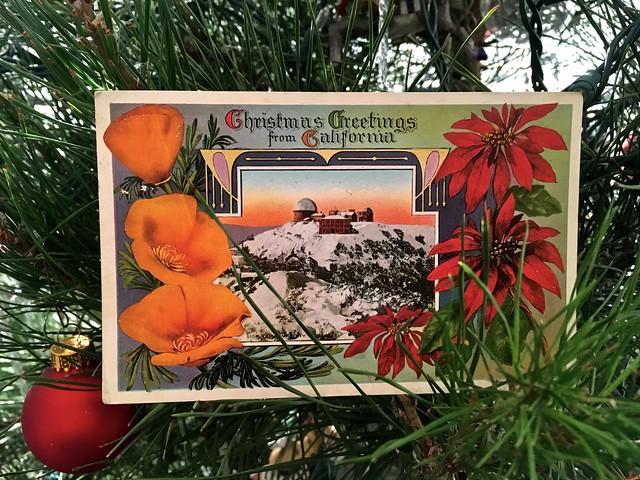 Christmas postcard sent Dec. 16, 1919