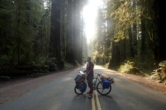 Me and yonder loving the Redwoods!