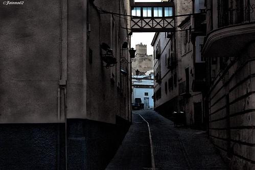 Observando la Alcazaba