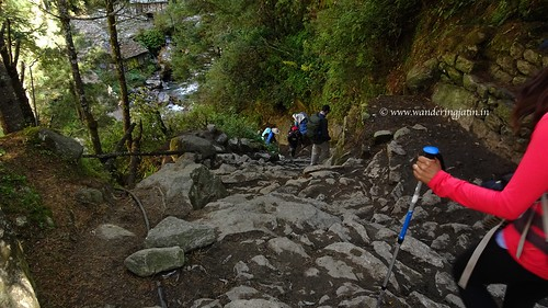 Trail on Everest Base Camp Trek