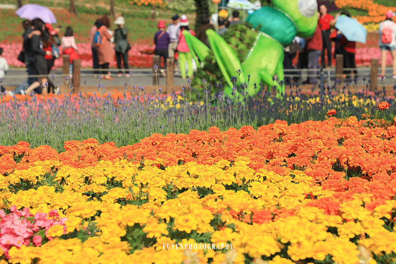 2017臺中國際花毯節6