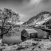 Winter ...has arrived ! by Einir Wyn Leigh