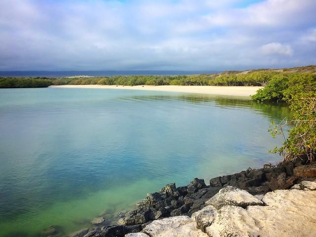 The lagoon at Playa Mansa, Tortuga Bay, Galapagos