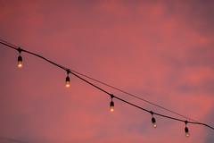 December Sunsets in St. Petersburg, FL