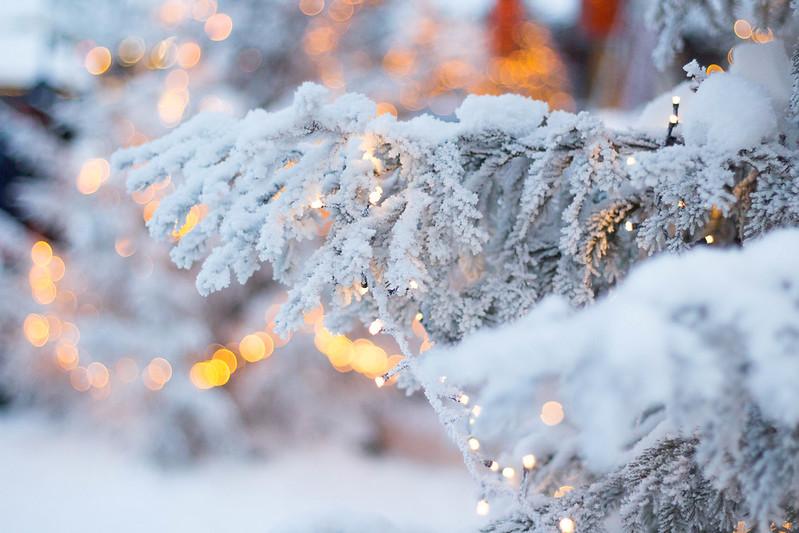 joulupukin pajakylä blogi 8