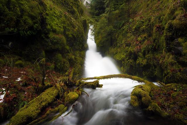 Upper South Fork Cripple Creek Falls - 17 ft